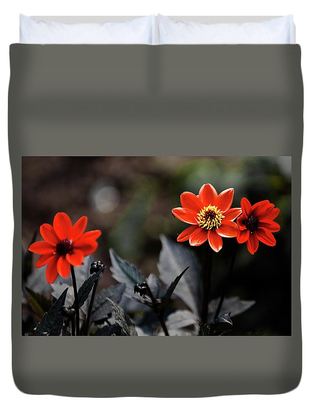 Flower Duvet Cover featuring the photograph Flower by Hristo Shanov