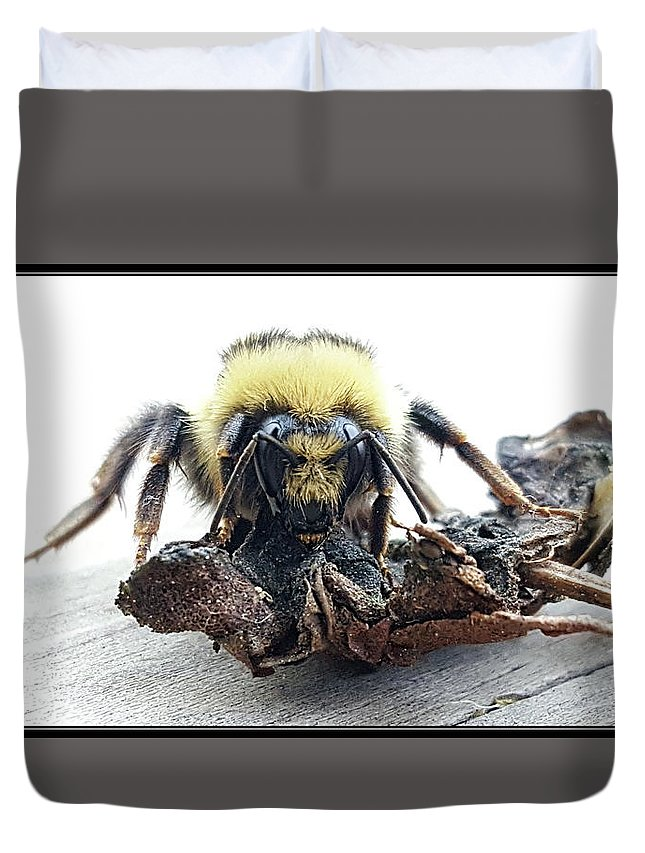 Duvet Cover featuring the photograph 28 by J and j Imagery
