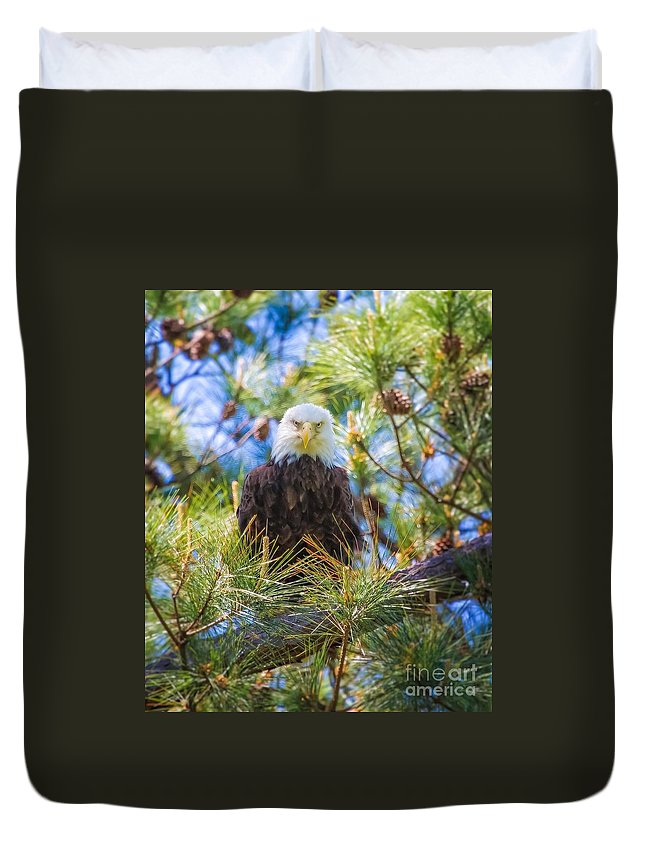 Bald Eagle Duvet Cover featuring the photograph Bald Eagle by Warrena J Barnerd