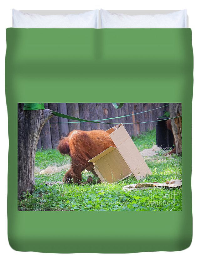 Hungary Duvet Cover featuring the photograph Budapest Zoo by Milena Boeva