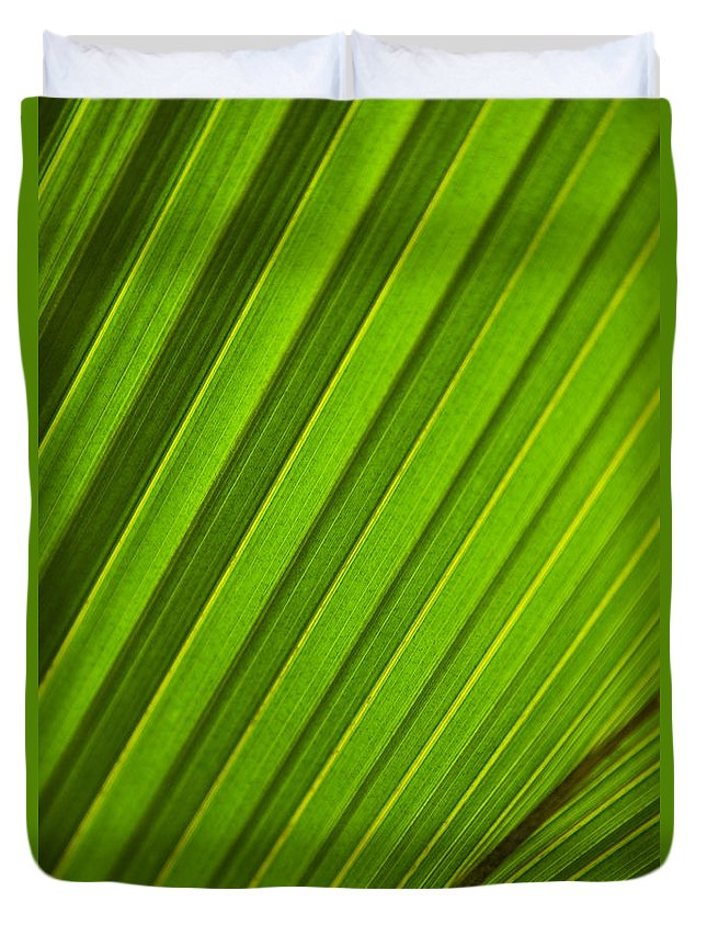 Abstract Duvet Cover featuring the photograph Coconut Palm Leaf by Dana Edmunds - Printscapes