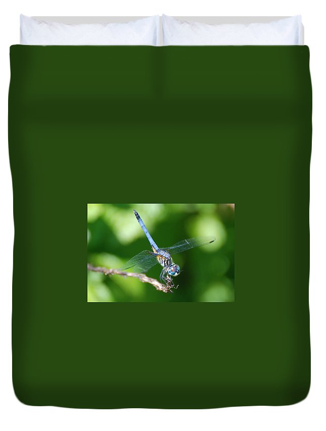 Dragonfly Duvet Cover featuring the photograph Dragon Fly by Rob Hans