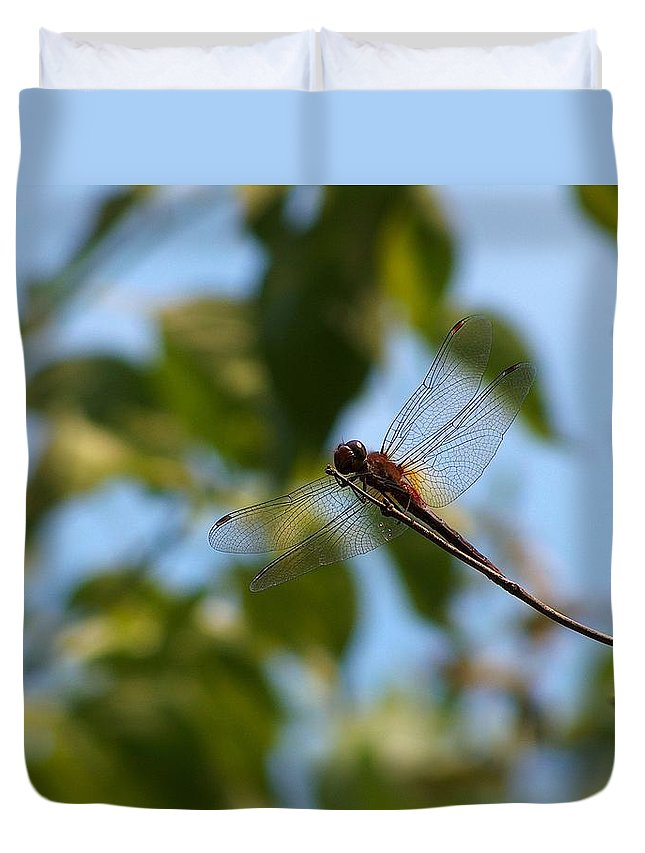 Digital Art Duvet Cover featuring the photograph Dragonfly by Belinda Cox