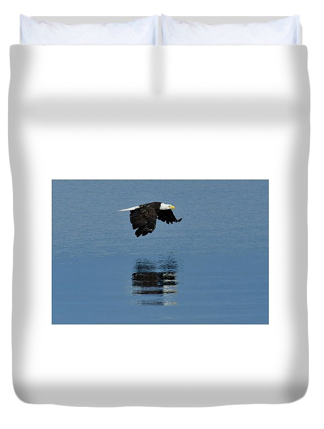 North America Duvet Cover featuring the photograph Eagle by Christian Heeb