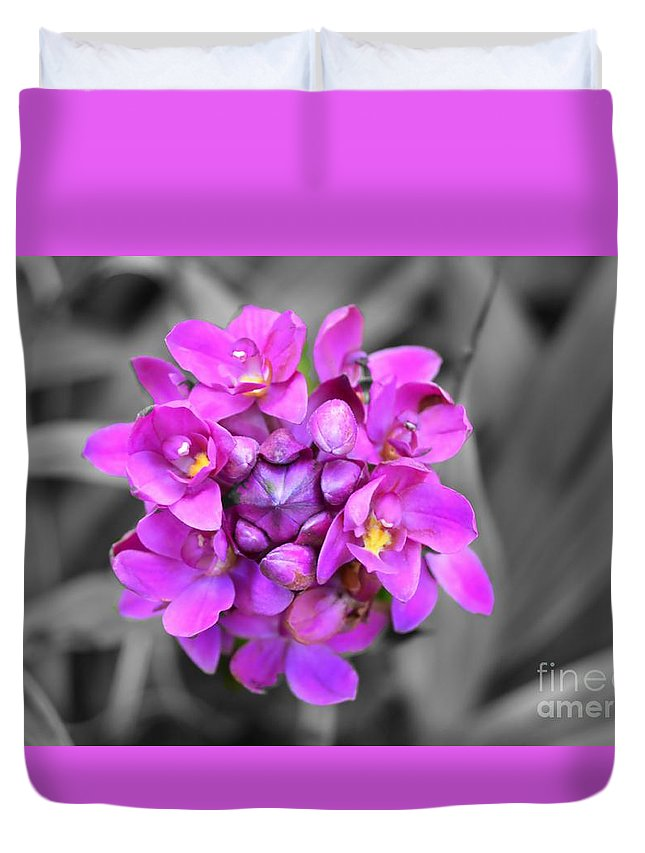 Flower Duvet Cover featuring the photograph Fuchsia Ground Orchid by Glenn Forman