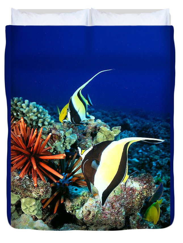 30-pfs0056 Duvet Cover featuring the photograph Hawaiian Reef Scene by Dave Fleetham - Printscapes
