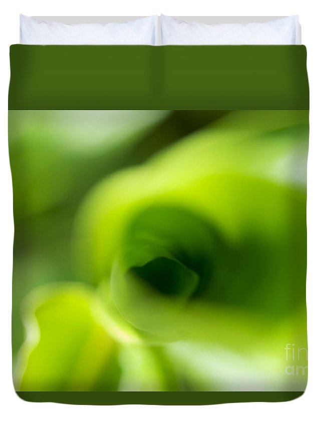 83-pfs0185 Duvet Cover featuring the photograph Leaf Abstract by Ray Laskowitz - Printscapes