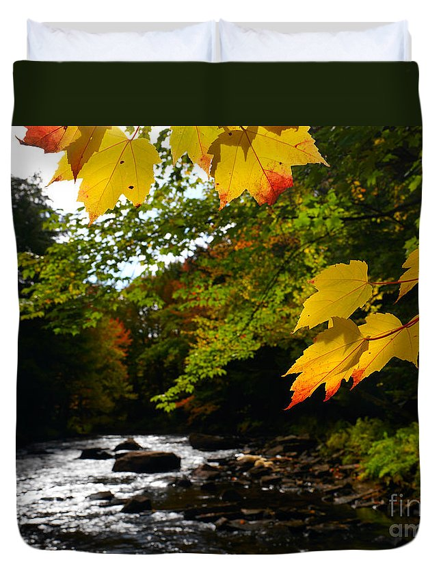 Autumn Duvet Cover featuring the photograph Ontario Autumn Scenery by Oleksiy Maksymenko
