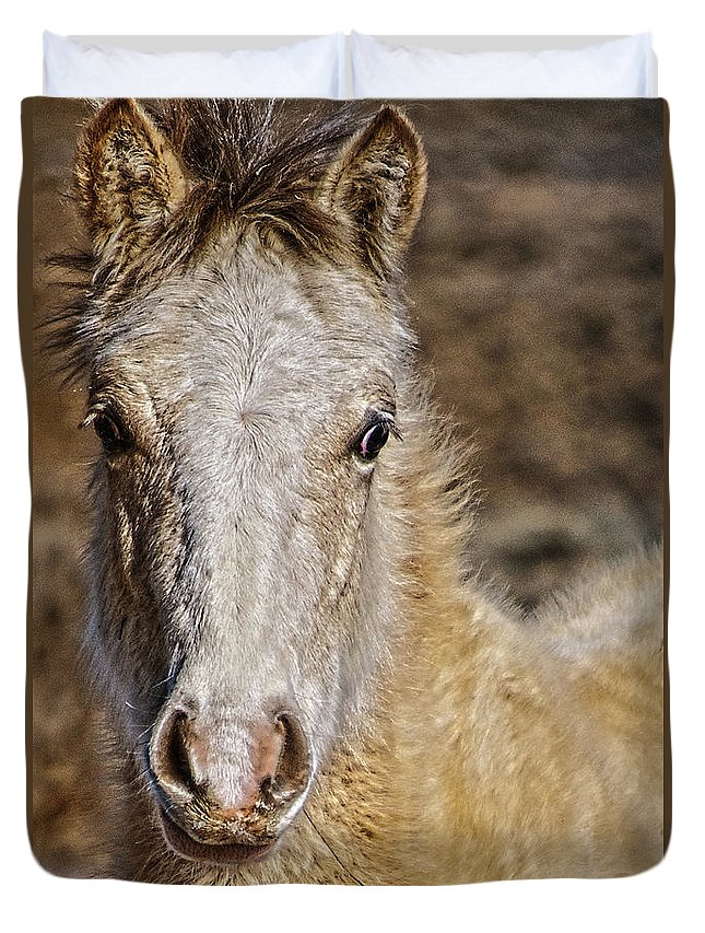 Santa Duvet Cover featuring the photograph Red Willow Pony by Charles Muhle
