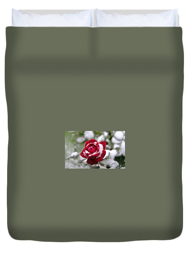 Rose Duvet Cover featuring the digital art Rose by Dorothy Binder