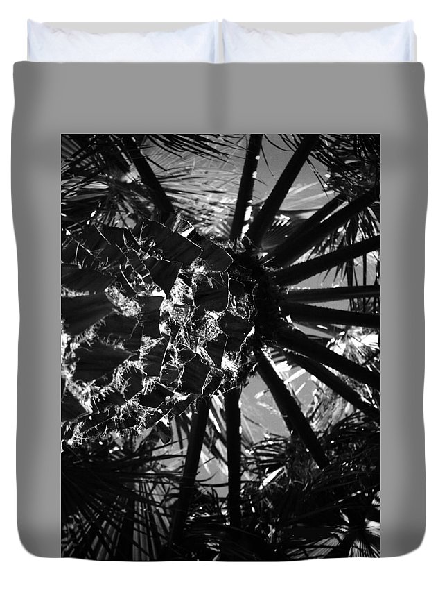 Tree Duvet Cover featuring the photograph Tree by Radulescu Adriana Lucia
