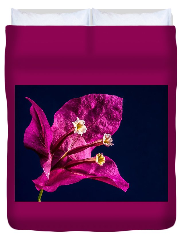 Flower Duvet Cover featuring the photograph Flower by FL collection