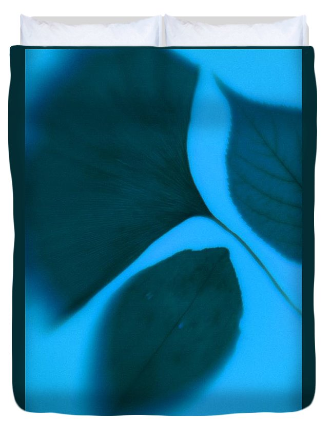 Color Duvet Cover featuring the photograph 3 Leaves Series by Tamarra Tamarra