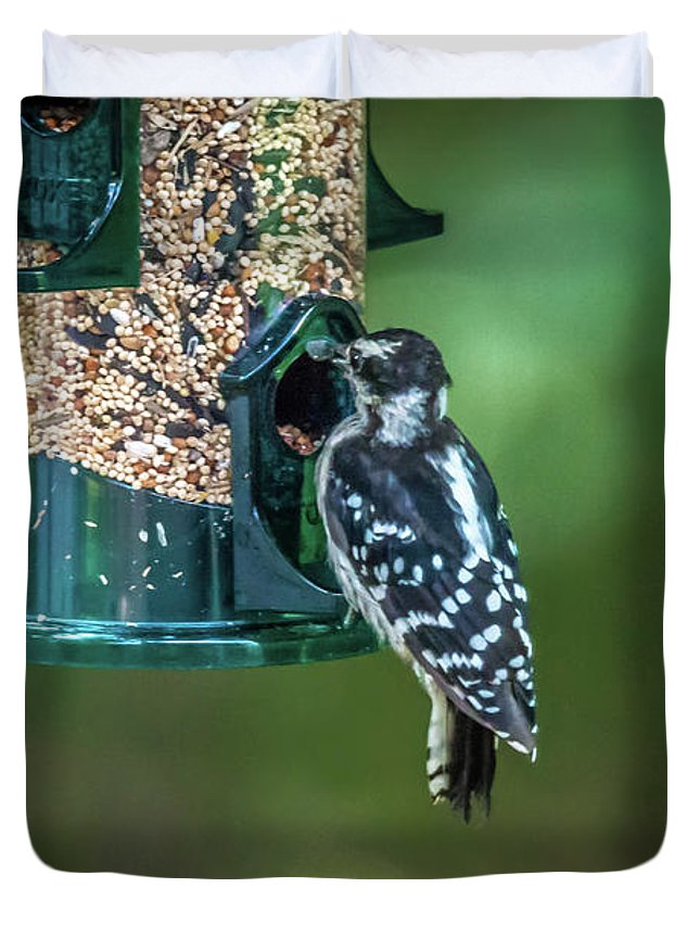 Woodpecker Duvet Cover featuring the photograph Downy Woodpecker In The Wild by Alex Grichenko