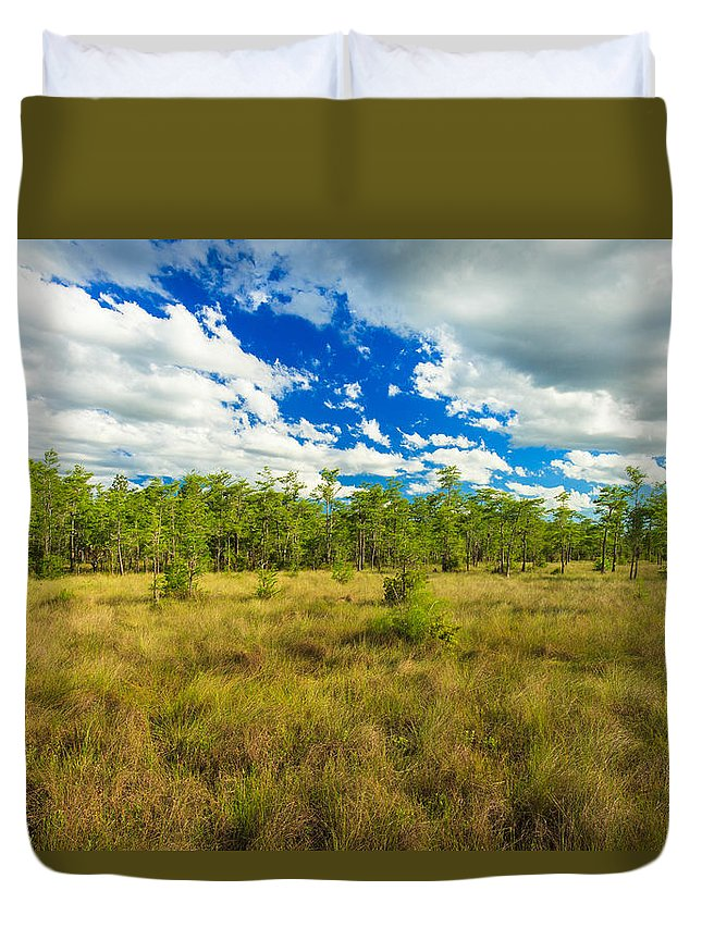 Everglades Duvet Cover featuring the photograph Florida Everglades by Raul Rodriguez