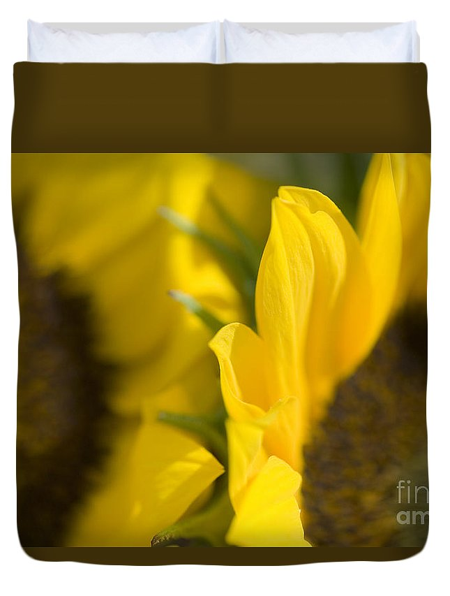83-pfs0181 Duvet Cover featuring the photograph Flower Abstract by Ray Laskowitz - Printscapes