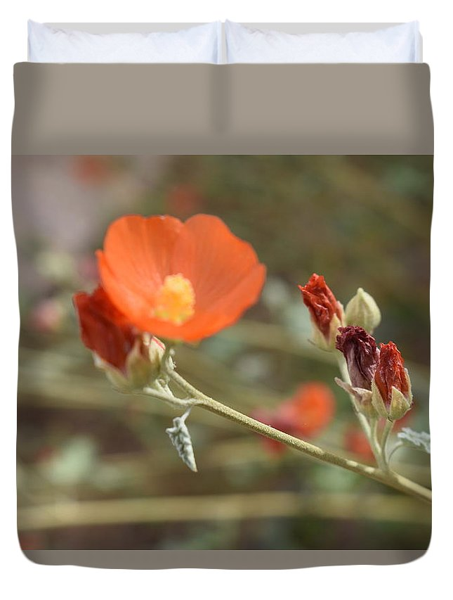 Flower Duvet Cover featuring the photograph Flower by Naga Ikkurthi