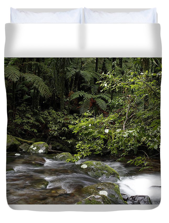Creek Duvet Cover featuring the photograph Forest Stream by Les Cunliffe