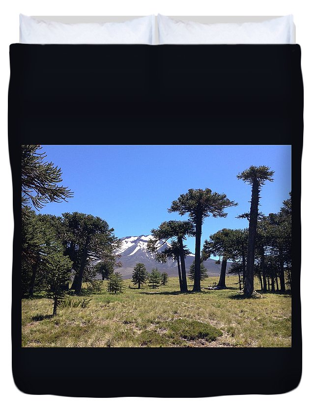Green Duvet Cover featuring the photograph Landscape by FL collection