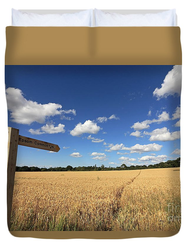 Tracks Through Golden Wheat Field Sign Uk Weather Summer Sunshine At Epsom Duvet Cover featuring the photograph Tracks Through Golden Wheat Field by Julia Gavin
