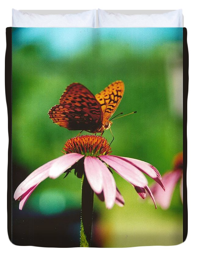 #416 14a Butterfly Coneflower Lunch Break Duvet Cover featuring the photograph #416 14a Butterfly Fritillary, Coneflower Lunch Break Good Till The Last Drop by Robin Lee Mccarthy Photography