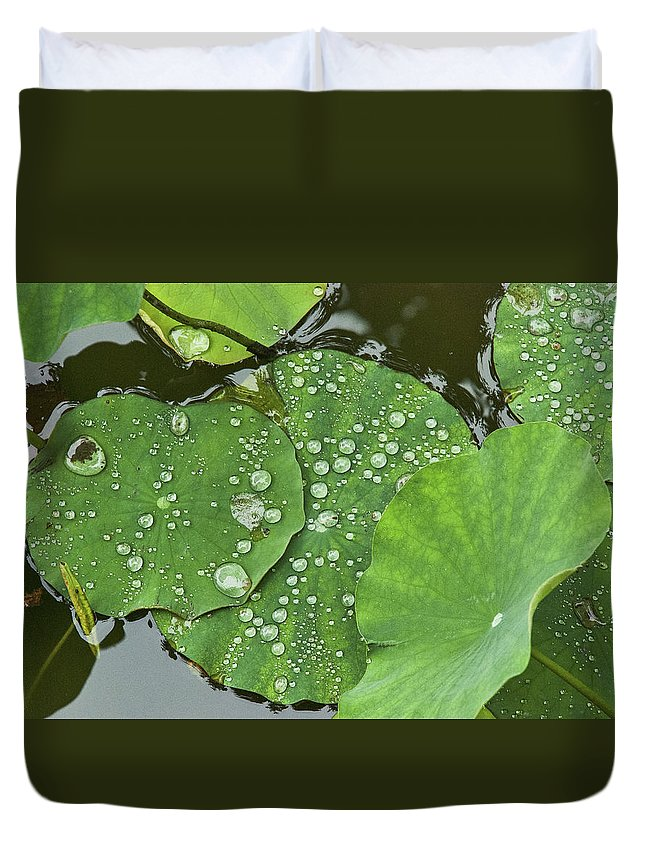 Asia Duvet Cover featuring the photograph 4634- Lilypad by David Lange