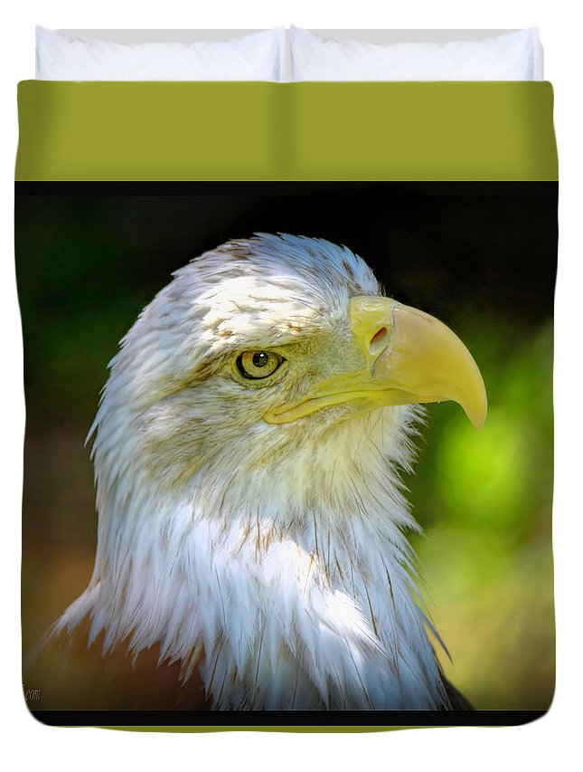 Eagle Duvet Cover featuring the photograph American Bald Eagle by LeeAnn McLaneGoetz McLaneGoetzStudioLLCcom