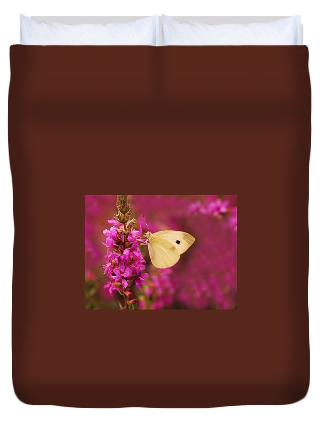 Butterfly Duvet Cover featuring the digital art Butterfly by Dorothy Binder