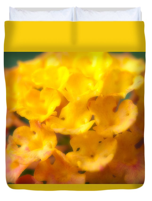 Flower Duvet Cover featuring the photograph Flower by Sebastian Musial