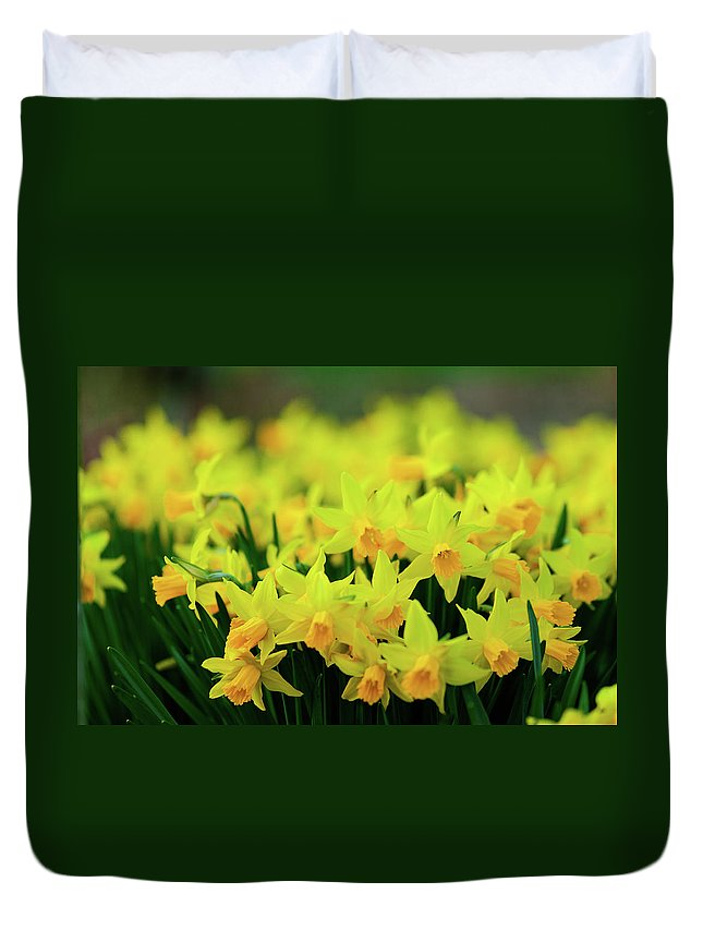 Spring Duvet Cover featuring the photograph Spring by Hristo Shanov