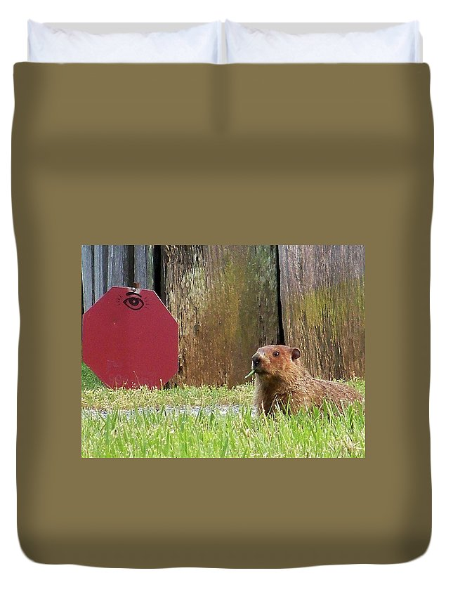 Groundhog Duvet Cover featuring the photograph 5002-groundhog by Martha Abell
