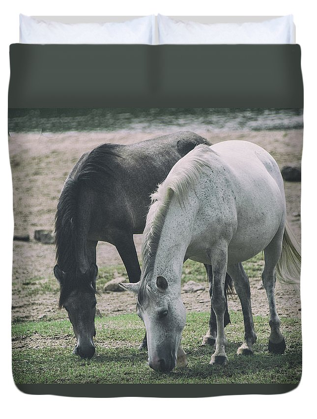 Horse Duvet Cover featuring the photograph Wild Mustangs by Marit Runyon