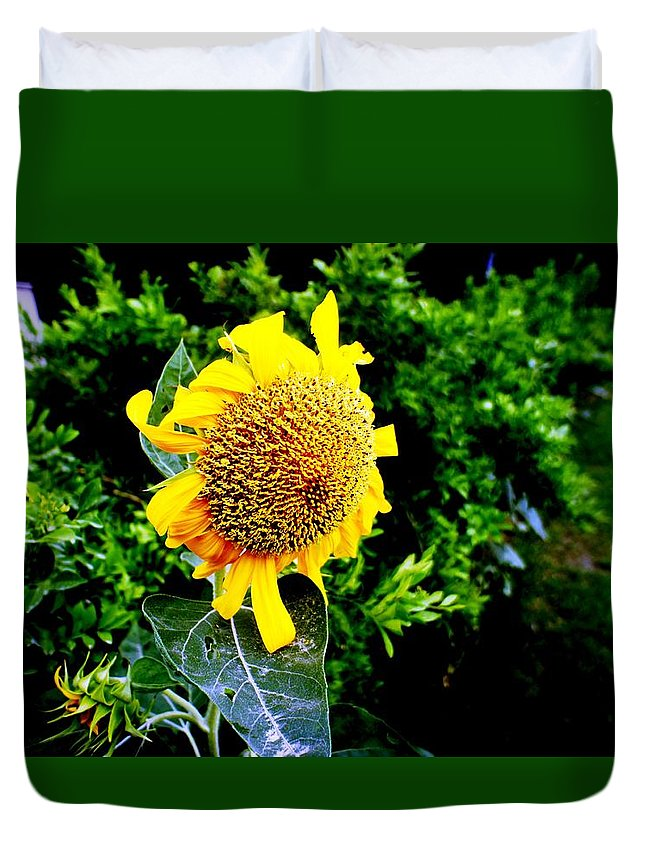 Flowers Duvet Cover featuring the photograph Love Flowers by Baljit Chadha
