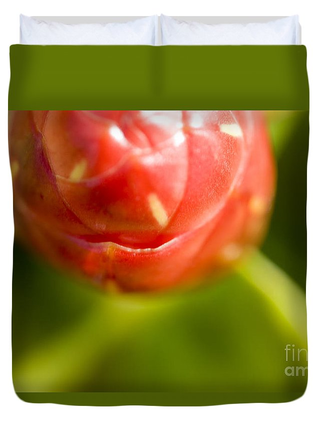 83-pfs0175 Duvet Cover featuring the photograph Flower Abstract by Ray Laskowitz - Printscapes