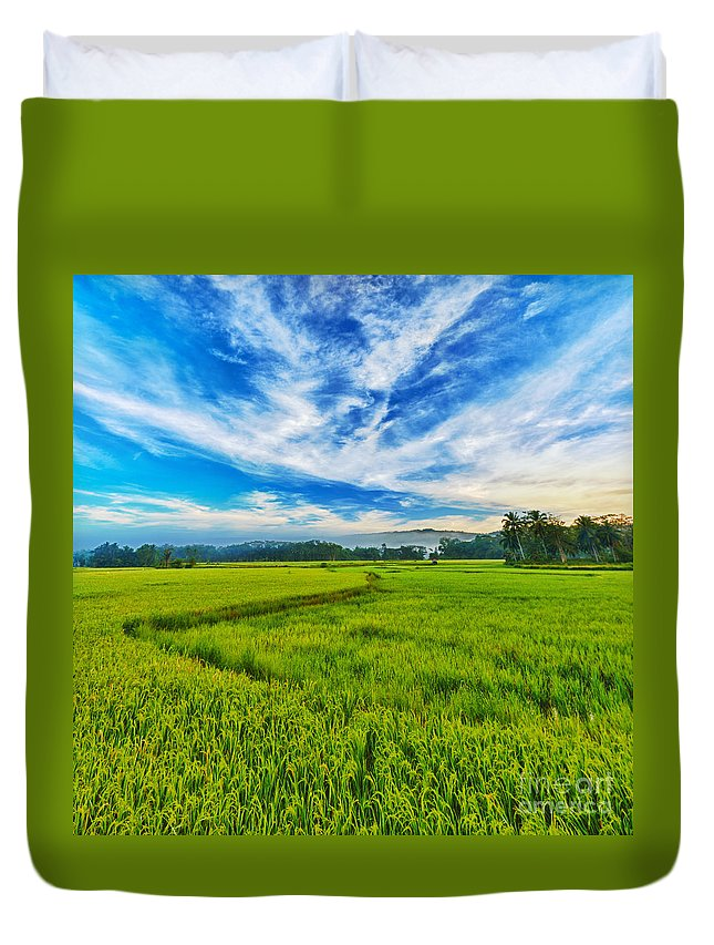 Panorama Duvet Cover featuring the photograph Paddy Rice Panorama by MotHaiBaPhoto Prints