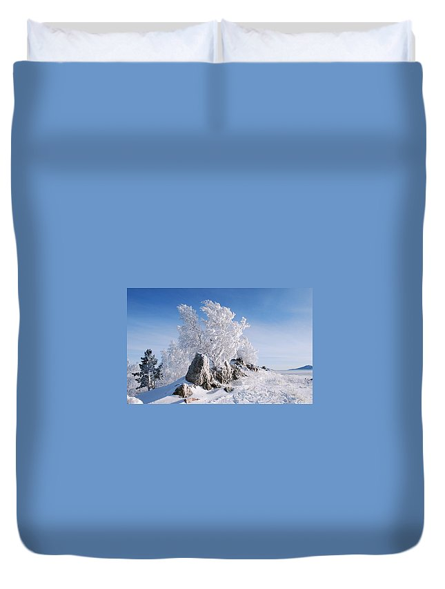 Winter Duvet Cover featuring the digital art Winter by Dorothy Binder