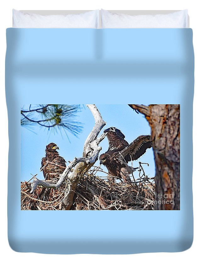 Duvet Cover featuring the photograph 6823 by Don Solari