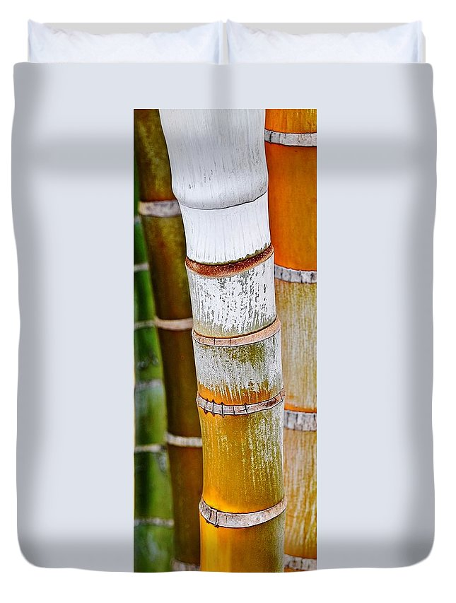 Werner Lehmann; Bamboo Tree; Stems; Dypsis Lutescens; Close Up; Bamboo Palm; Tree Stems; Yellow; Rings; Plant; Exotic; Decorative; Background; Green; Duvet Cover featuring the photograph Bamboo Palm by Werner Lehmann