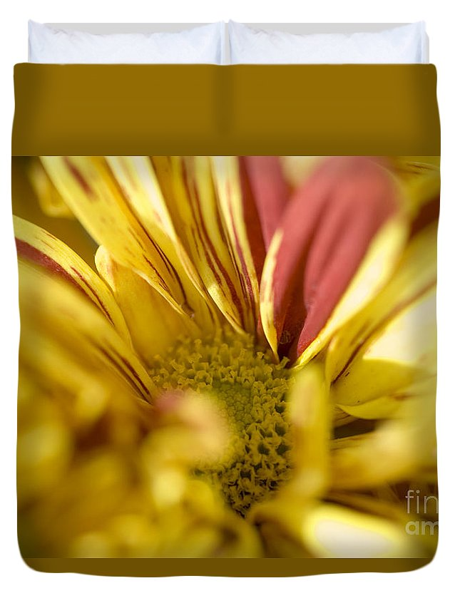 Abstract Duvet Cover featuring the photograph Flower Abstract by Ray Laskowitz - Printscapes