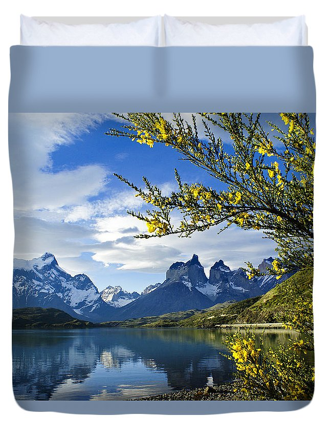 Patagonia Duvet Cover featuring the photograph Springtime in Torres del Paine by Michele Burgess
