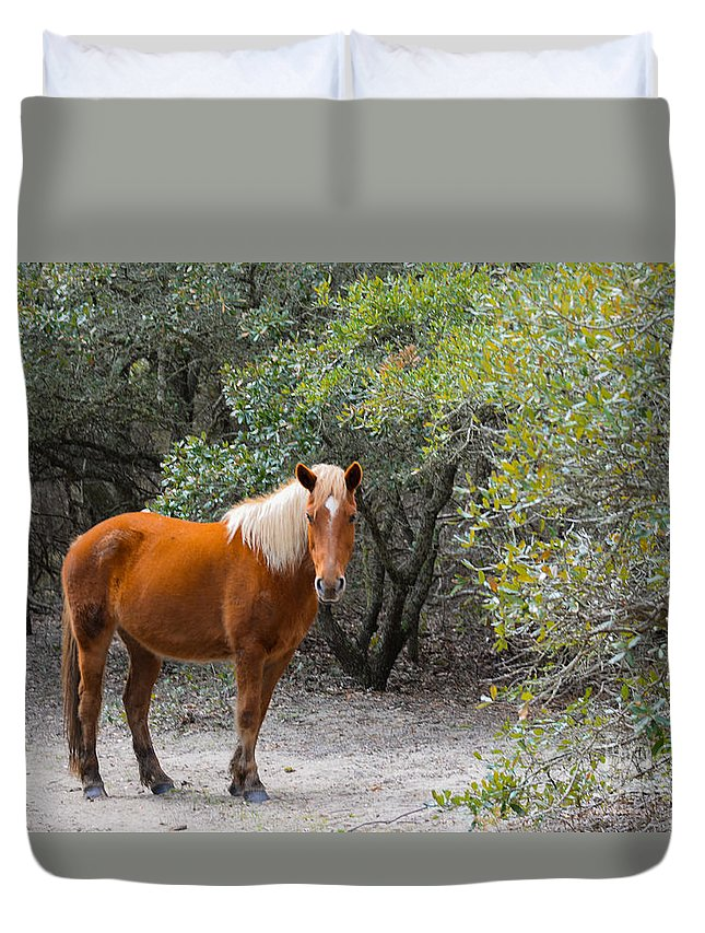 Landscape Duvet Cover featuring the photograph Wild Horses by Tom Rostron