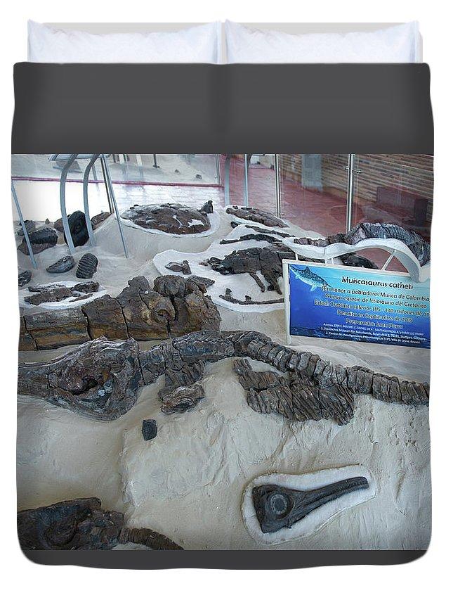 Centro De Investigaciones Paleontologicas Duvet Cover featuring the digital art Centro De Investigaciones Paleontologicas by Carol Ailles