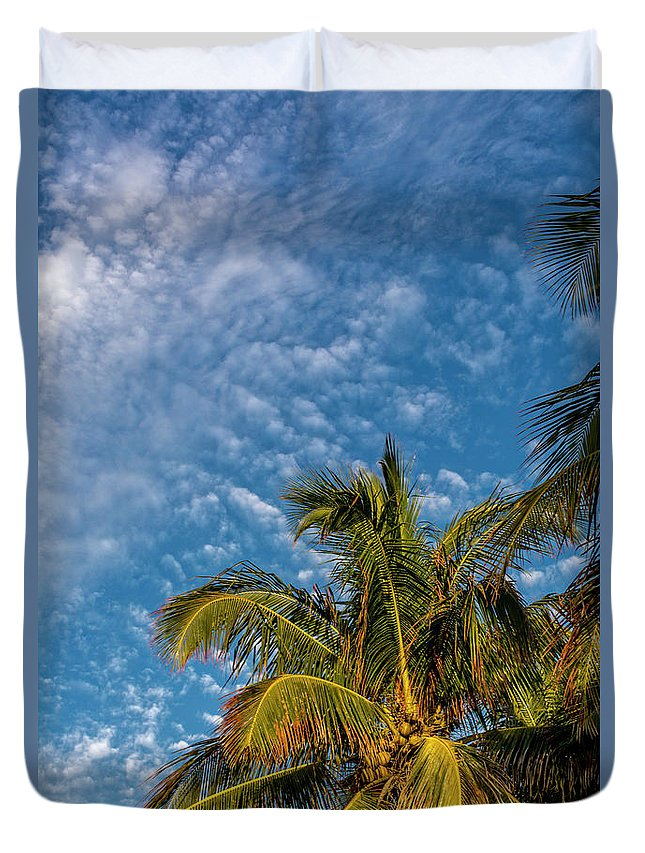 Clouds Duvet Cover featuring the photograph 8156- Palm Tree by David Lange