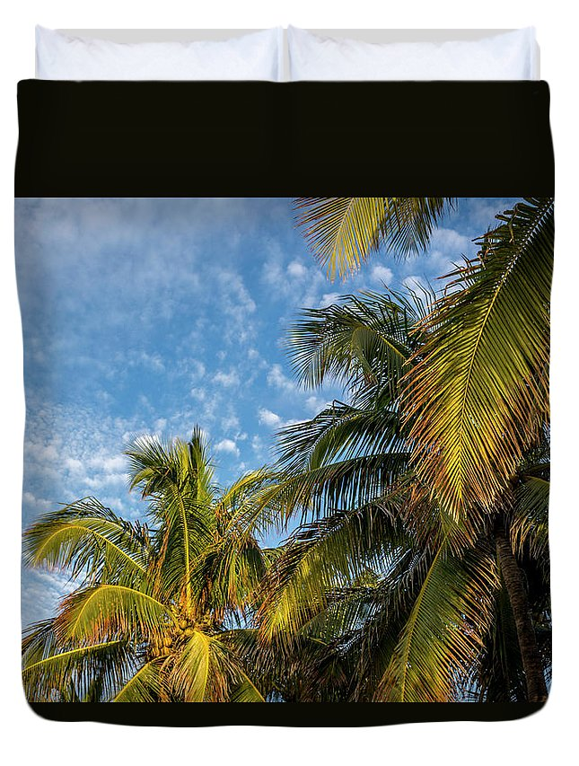 Clouds Duvet Cover featuring the photograph 8167- Palm Tree by David Lange