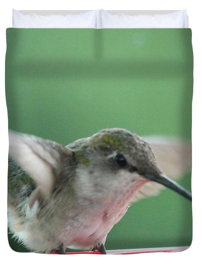 Mccombie Duvet Cover featuring the photograph Female Ruby-throated Hummingbird by J McCombie