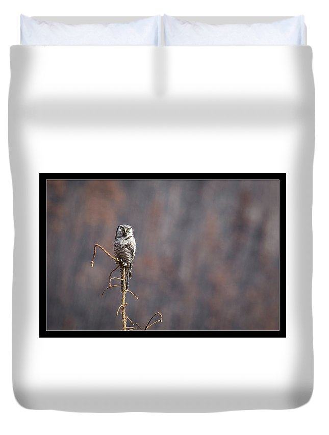 Duvet Cover featuring the photograph 9 by J and j Imagery