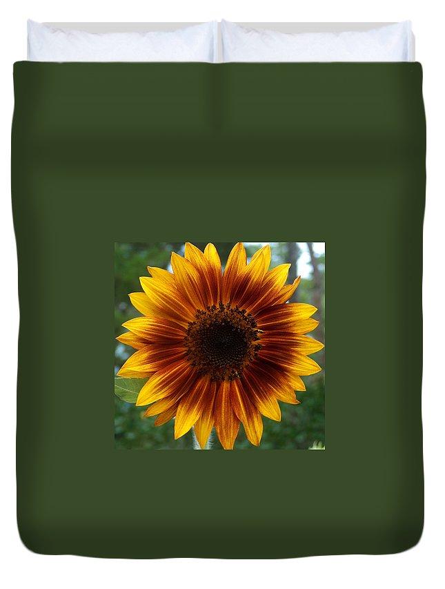 Sunflower Duvet Cover featuring the photograph Sunflower by Racquel Morgan