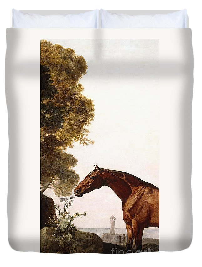 George Stubbs Duvet Cover featuring the painting A Bay Arab In A Coastal Landscape by George Stubbs