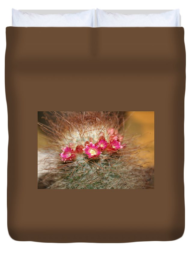 Flowers Nature Duvet Cover featuring the photograph A Beautiful Blur by Linda Sannuti