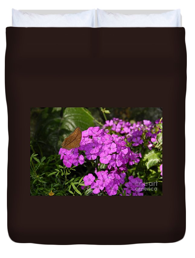 Butterfly Duvet Cover featuring the photograph A Beautiful Landing by David Lee Thompson